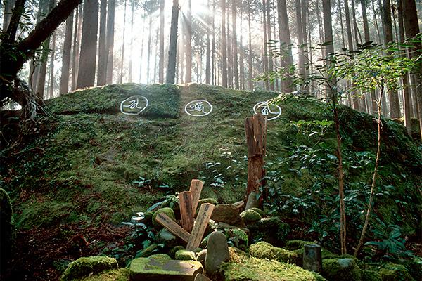 円座石(ワロウダイシ)