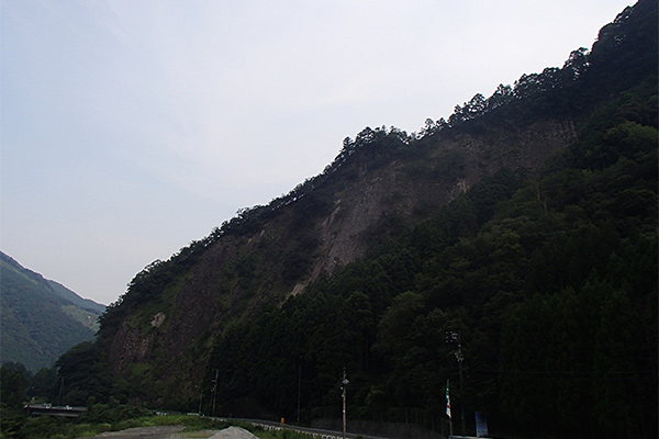 田長の猪岩