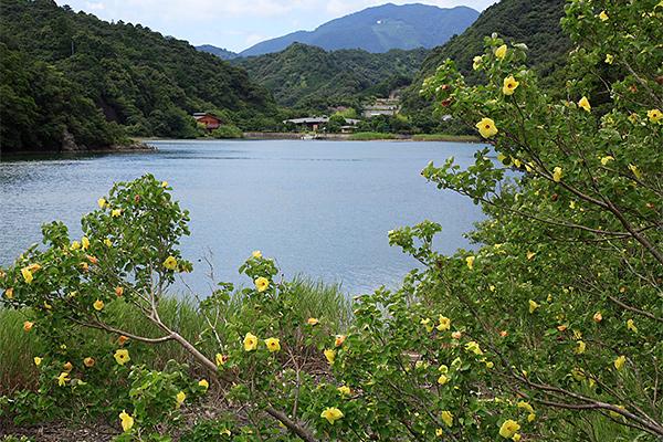 Yukashigata